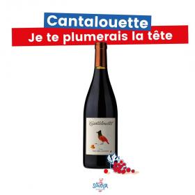 Un vin rouge fruité, facile à boire, avec des arômes de cassis, de groseilles et de mûres et quelques tanins soyeux 🍇  À boire avec des plats simples : poulet rôti, pièce de bœuf, grillades au barbecue, etc. Sinon, un saucisson peut largement suffire.  L'abus d'alcool est dangereux pour la santé. À consommer avec modération. · · · #lesavour #levinquivousvabien #vin #vins #wein #weinliebe #wine #vinrouge #vinrougefrançais #redwine